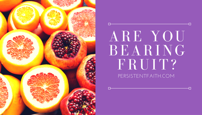 You Are Expected to Bear Fruit